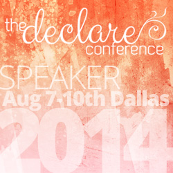 Declare Conference Speaker - Amy Locurto